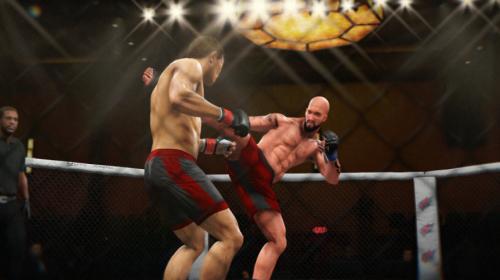 UFC 3 -6